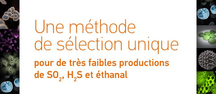 Une méthode de sélection unique pour de très faibles productions de SO2, H2S et éthanal